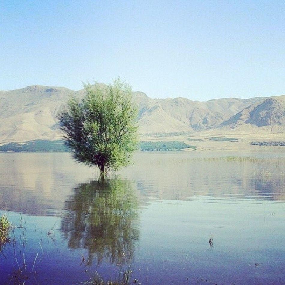 Yaz Instashow Malatya Kayısıkent karakayabaraj gölü yaa badem yemek istiyorum temiz hava solumak istiyorum gun batımını dagların arasından seyretmek istiyorum :((