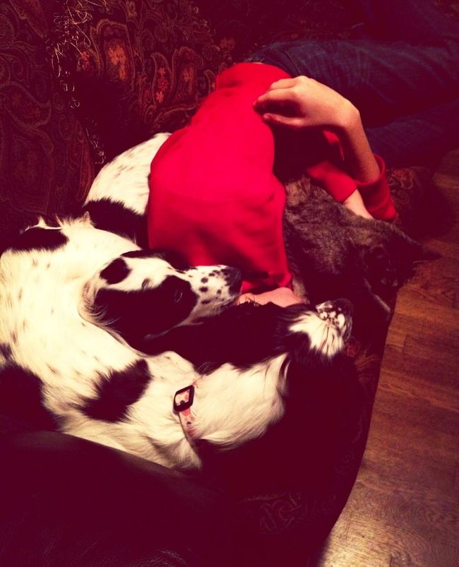 Sleeping With Samantha, Skittles, And Chloe