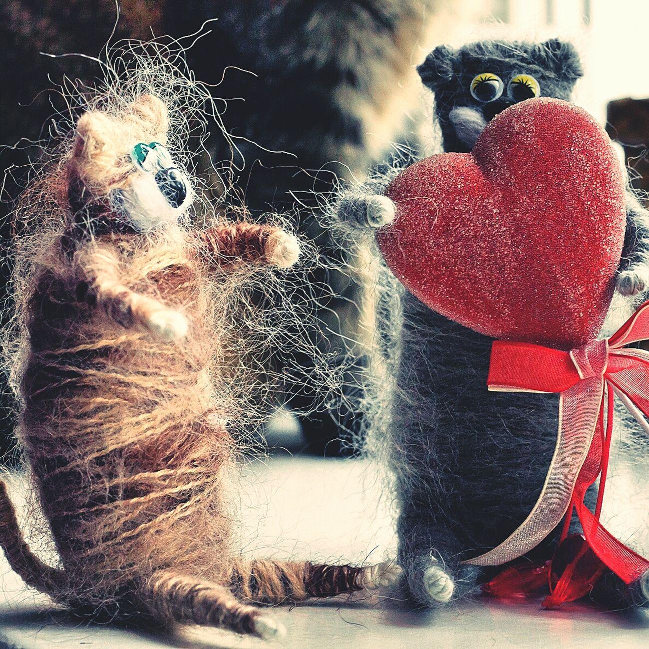 День Святого Валентина сердце ручная_работа котики праздник