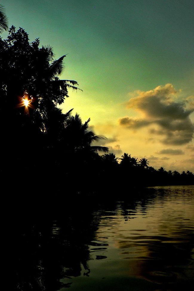 The captivating Beauty of Kerala!! Beautiful Silhouette Beautiful Sunset Clouds Coconut Coconut Trees Kerala Kerala India Kumarakom Lake Natural Light Natural Scenery Palm Palm Trees Scenery Scenery_collection Scenic Silhouette Silhouette Sunset Sunset