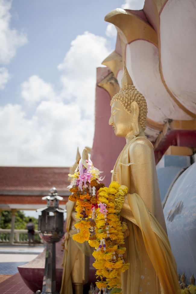 Buddha Statue Cultures Flowers Golden Photography Photostories Religion Sculpture Sky Spirituality Statue Temple Tradition Traveling Wanderlust