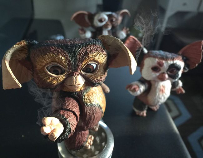 Keep em away from bright light! Gremlins Gizmo Toystories Toyphotography Toys 80s Mogwais