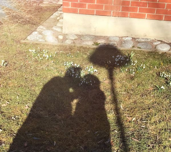 Kissing in early spring. Sunlight Day Outdoors Kisses❌⭕❌⭕ Shadows & Lights