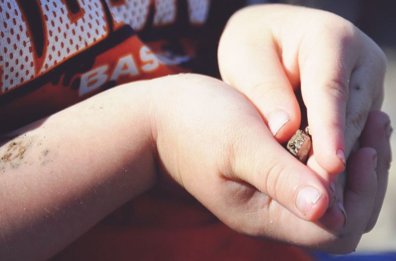 Human Body Part Human Hand People One Person Human Skin Close-up Day Child Childhood Childhood Memories Frog Frog In Hand Heart Shape One Boy Only Boy Boyhood Boys Will Be Boys Reptile Outdoor Photography