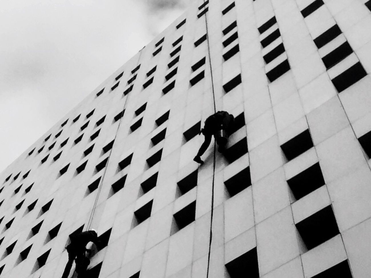 Scrolling spiders Architecture Spiderman Building Exterior Outdoors Capture The Moment Blackandwhite Window Bnw Bnw_collection