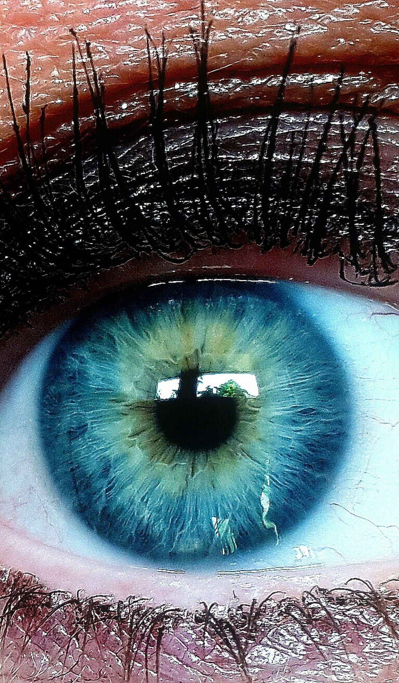 Eyes Taking Photos Closeupshot Closeup Close Up Macrophotography Macroclique Beautiful Eyes