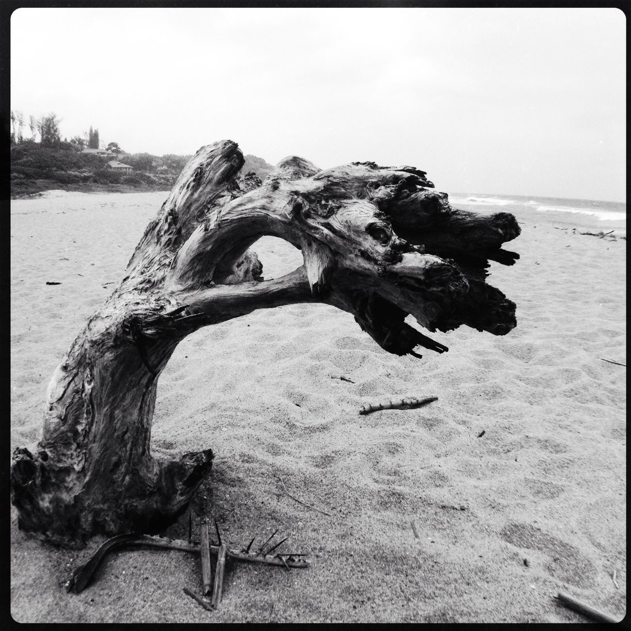 Beach EyeEm Best Shots EyeEm Nature Lover Blackandwhite Bw_collection