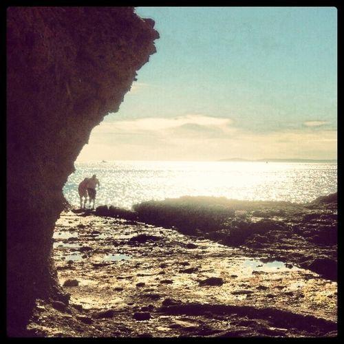 Lean on me Streamzoofamily California Beautiful Nature Sunset