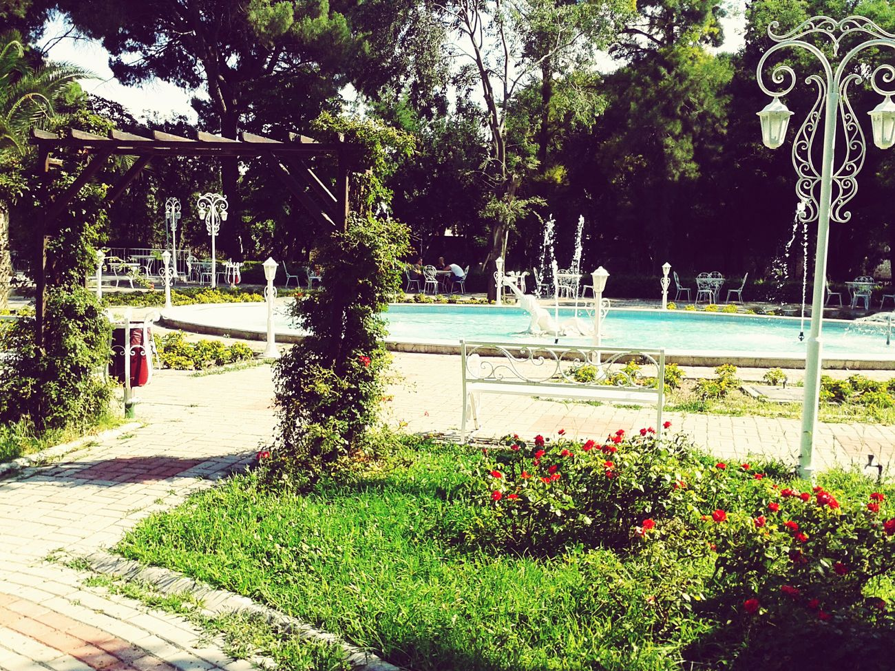 Suny Collegedays. Beatiful Place In Izmir . Populer Photos