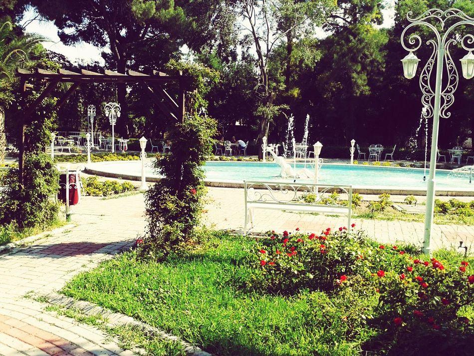 Suny Collegedays. Beatiful Place In Izmir . Populer Photos