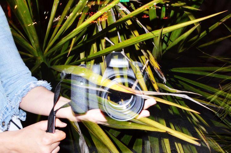Double Exposure Puntocero Hello World Amateurphotographer  Mexicanphotographer Photographylover Photography Nikonphotography Nikon D5100  Taking Photos Enjoying Life Nature Double Exposure