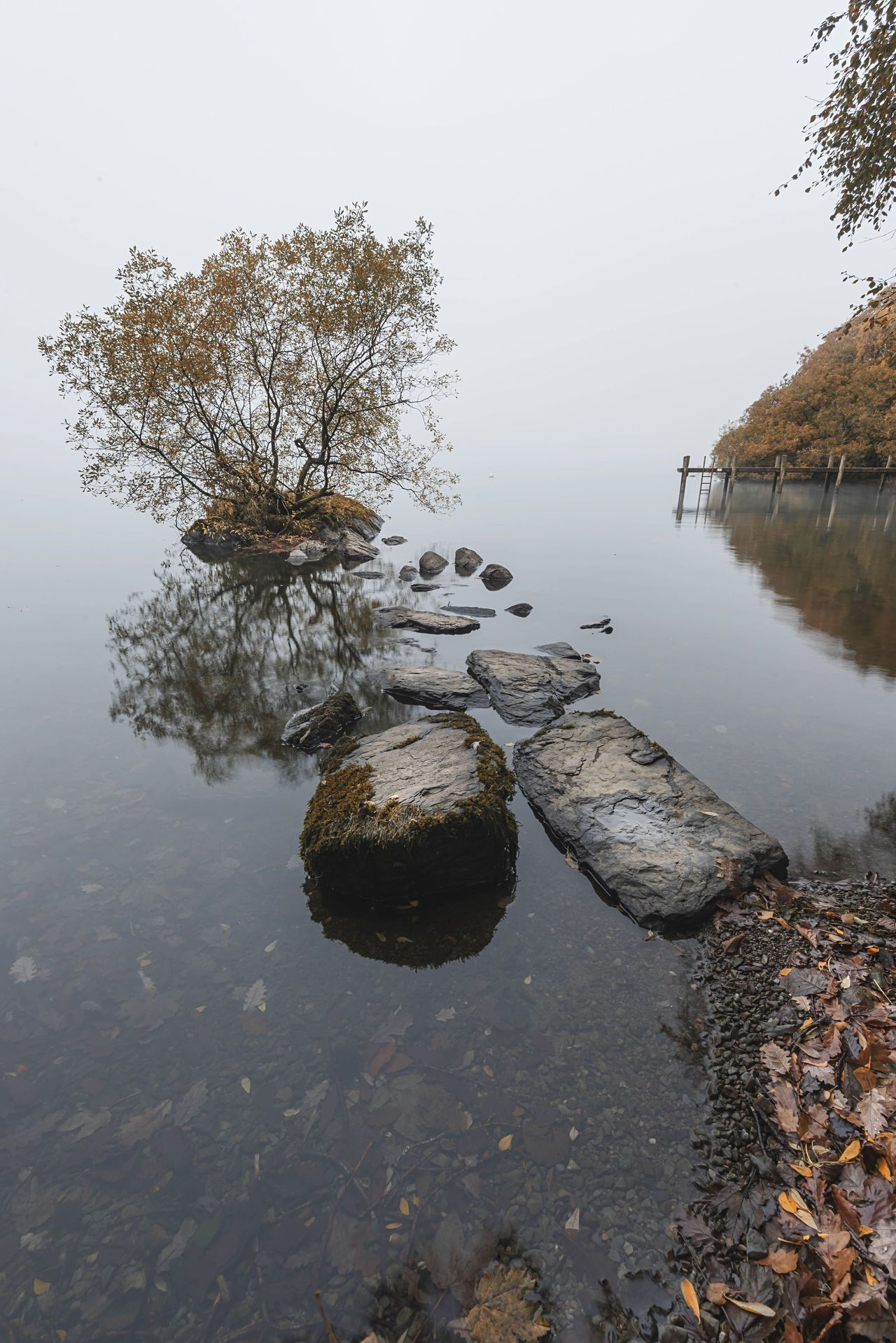 Steps Water Reflection Lake Tranquility Nature Rock - Object No People Outdoors Autumn Scenics Beauty In Nature Landscape Lone Tree The Great Outdoors - 2017 EyeEm Awards Lake View Lake District Cumbria Misty Foggy Waterscape Tranquil Scene Rocks And Water Rocks Tree Trunk