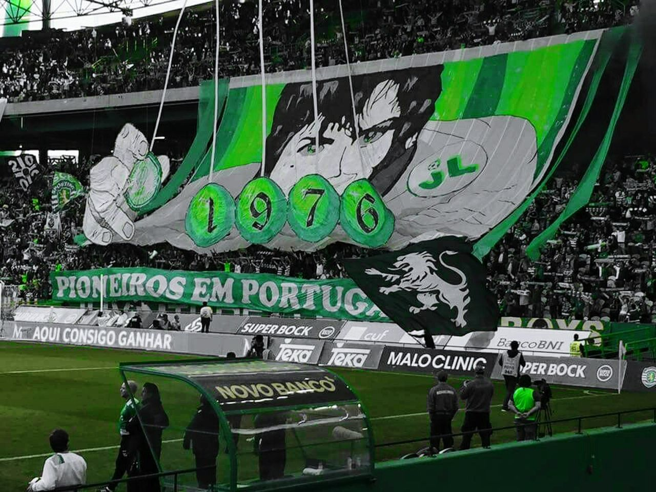 Primeiro A Nascer, Últimos A Morrer 41° Juventude Leonina Personal Perspective Getty Images EeYem Best Shots Enjoying The View EyeEm Best Shots Eeyem Photography Lisbon - Portugal Lisbonlovers Football Stadium Jl76 Pyro Fans Futebol Football Fever Stadium Juventudeleonina Football Fans Color Explosion Graffiti Art Graffiti Taking Photos Eyeem Market