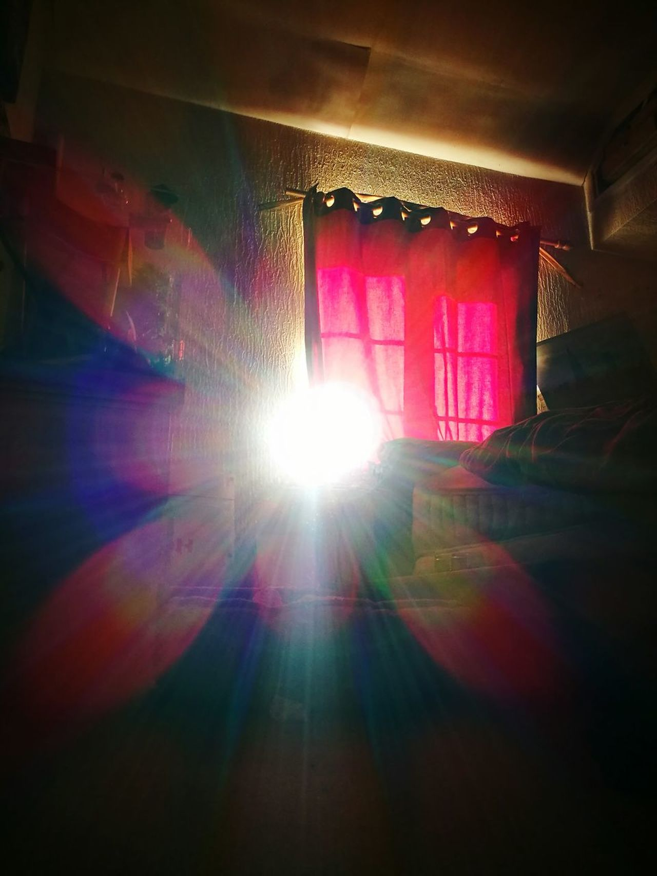 Indoors  Curtain No People Architecture Day Light Spectrum Sunbeam Colour Spectrum Beams Of Light Art Is Everywhere Flower Beautiful Day Visual Feast EyeEmNewHere Another Dimension Beam Me Up Beauty In Nature Share Your Adventure
