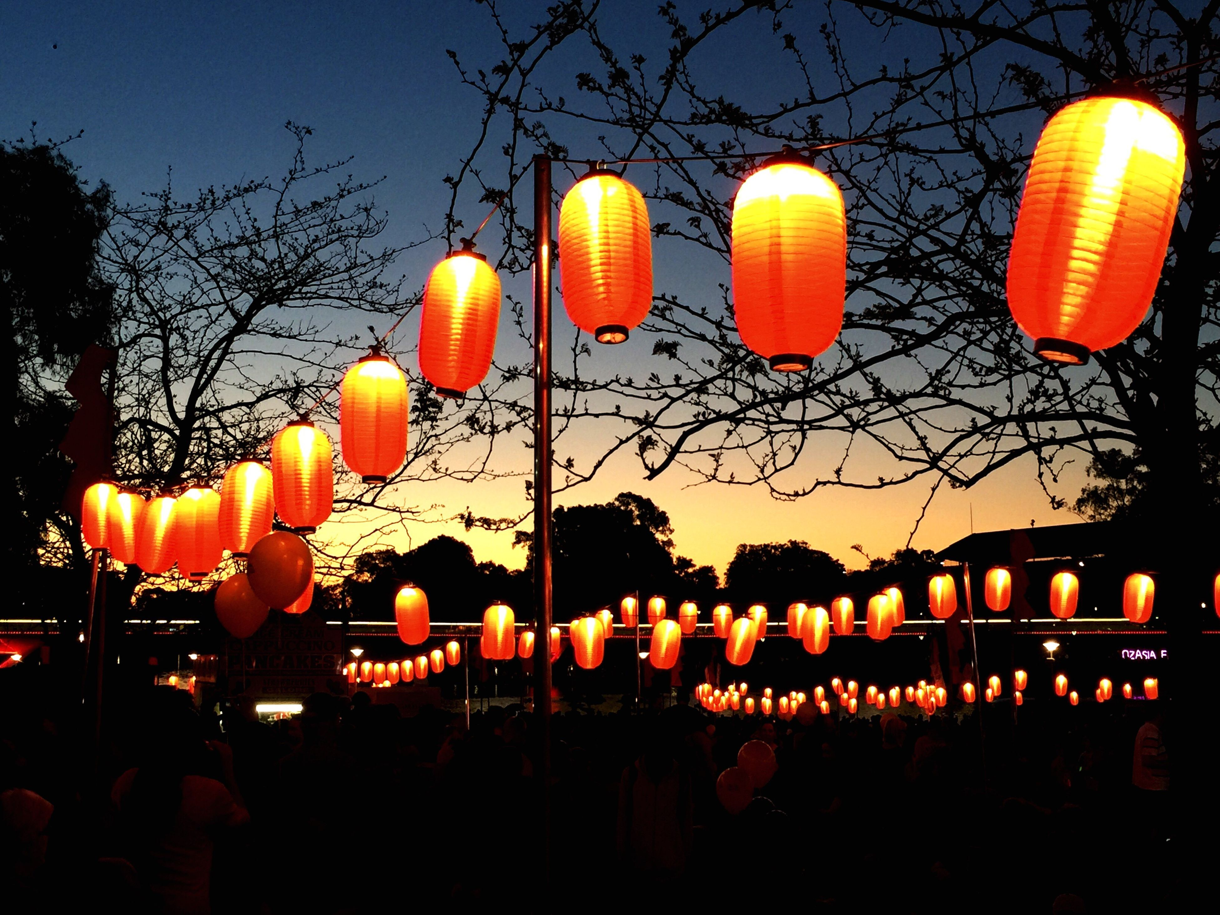 illuminated, lighting equipment, hanging, in a row, sky, decoration, clear sky, sunset, silhouette, street light, night, electricity, lantern, low angle view, electric light, dusk, celebration, orange color, tree, balloon