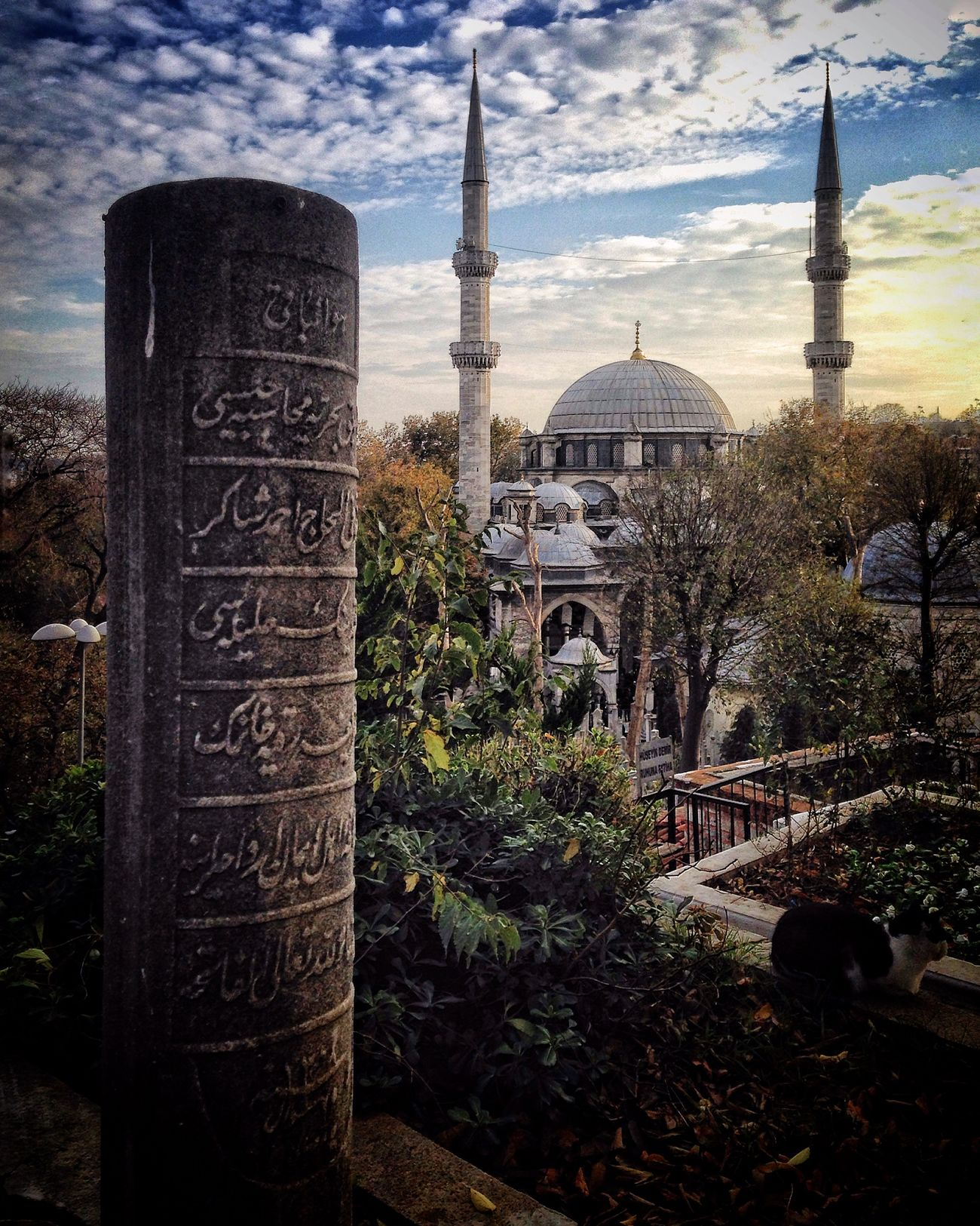 Gezgin İstanbul'da... The Great Outdoors - 2015 EyeEm Awards