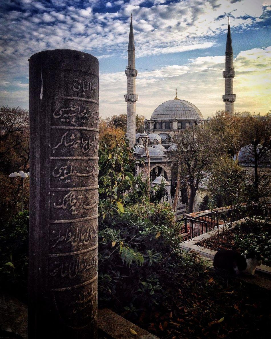 Gezgin İstanbul'da... The Great Outdoors - 2015 EyeEm Awards