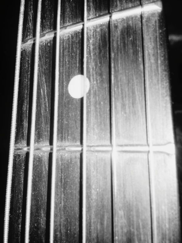 Wood and strings, sound of life