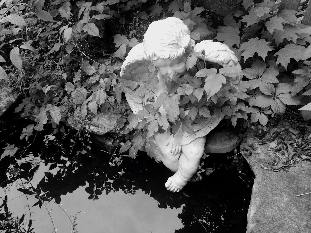 Concrete Angel Landscape Lawn Pond