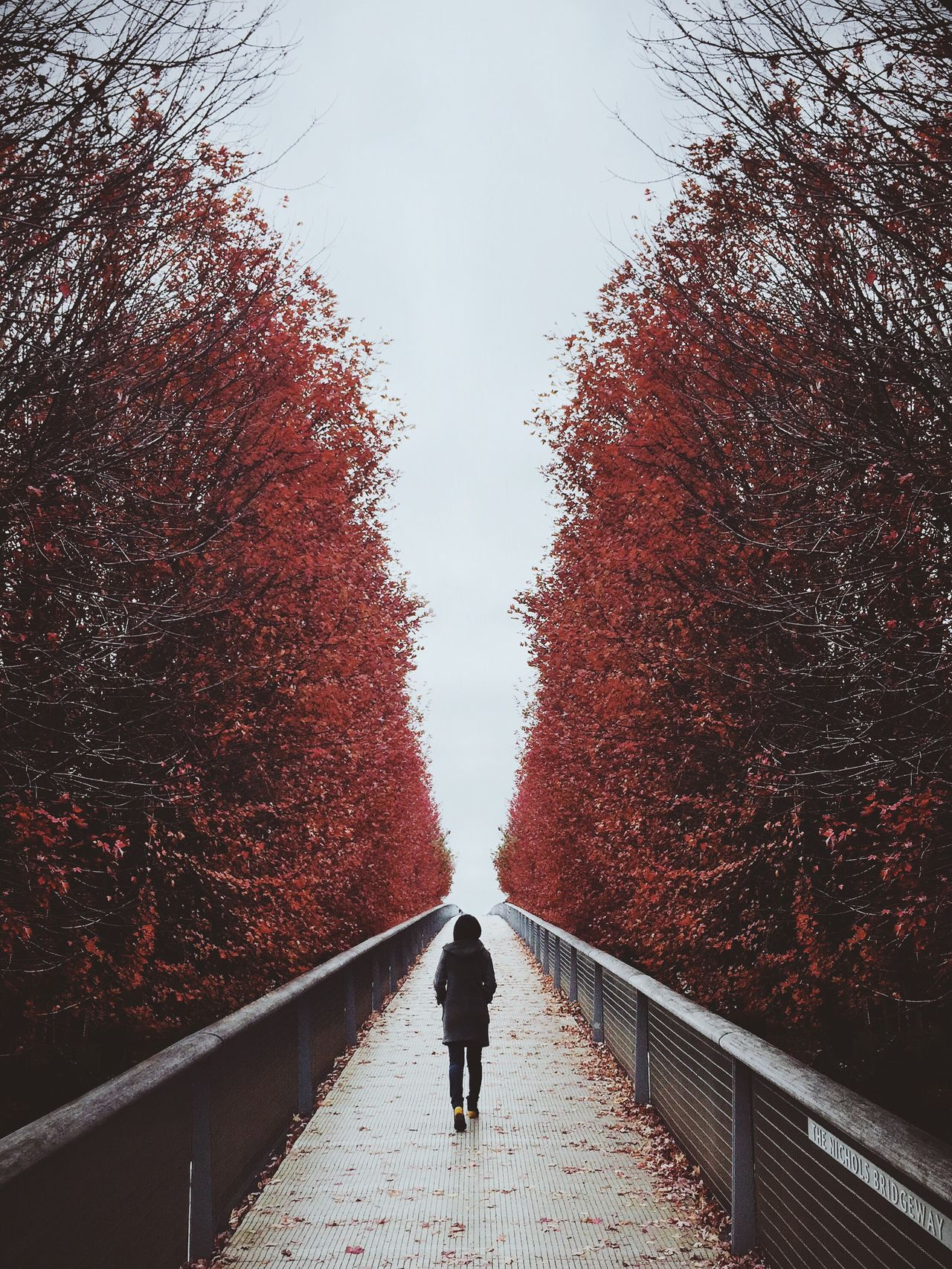 Tree Rear View The Way Forward Red Walking Real People Full Length Outdoors Day One Person Sky Beauty In Nature Nature Men Women Architecture