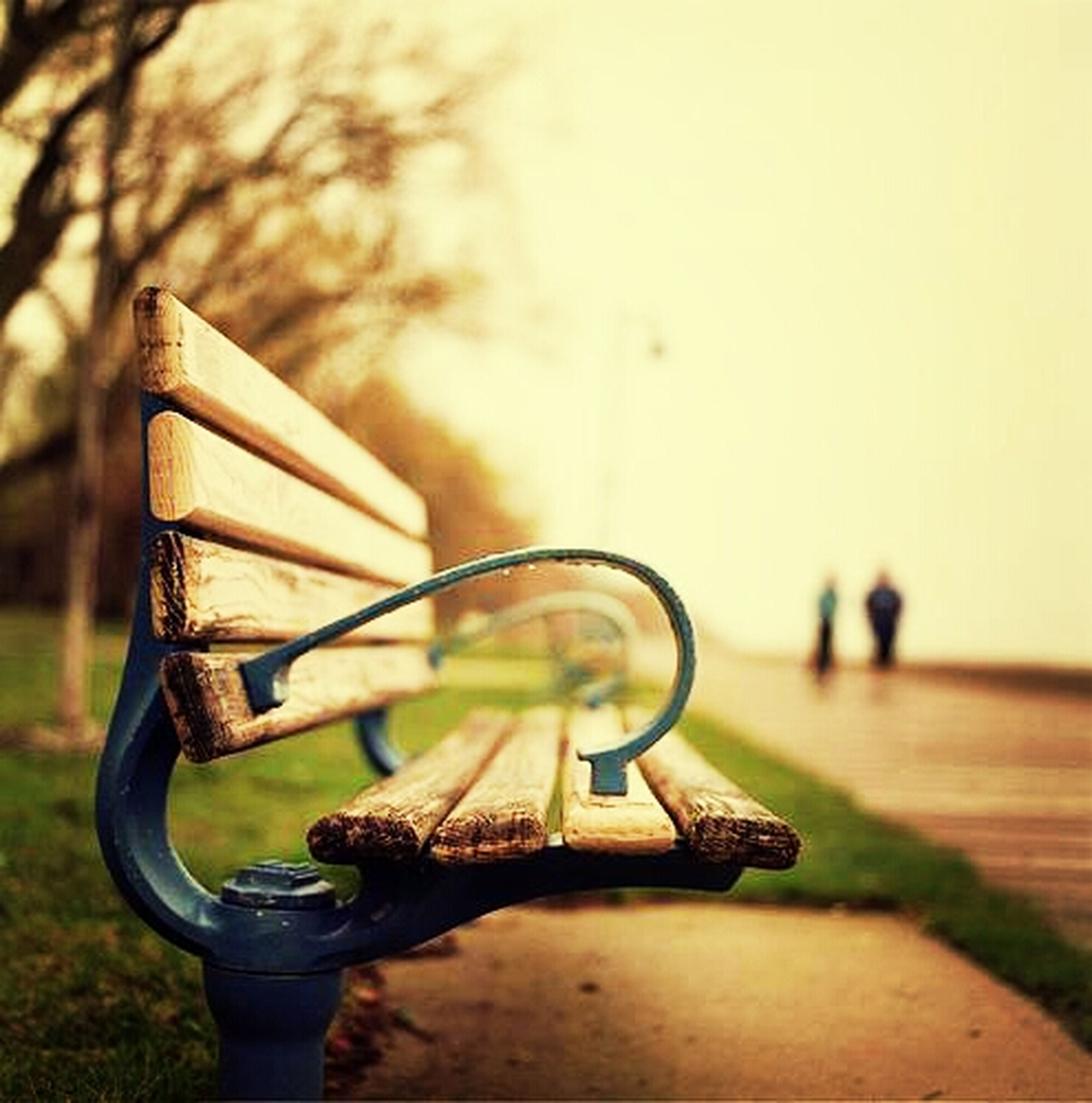 focus on foreground, close-up, metal, absence, tree, selective focus, still life, empty, day, bench, abandoned, outdoors, wood - material, old, table, no people, chair, park - man made space, metallic, field