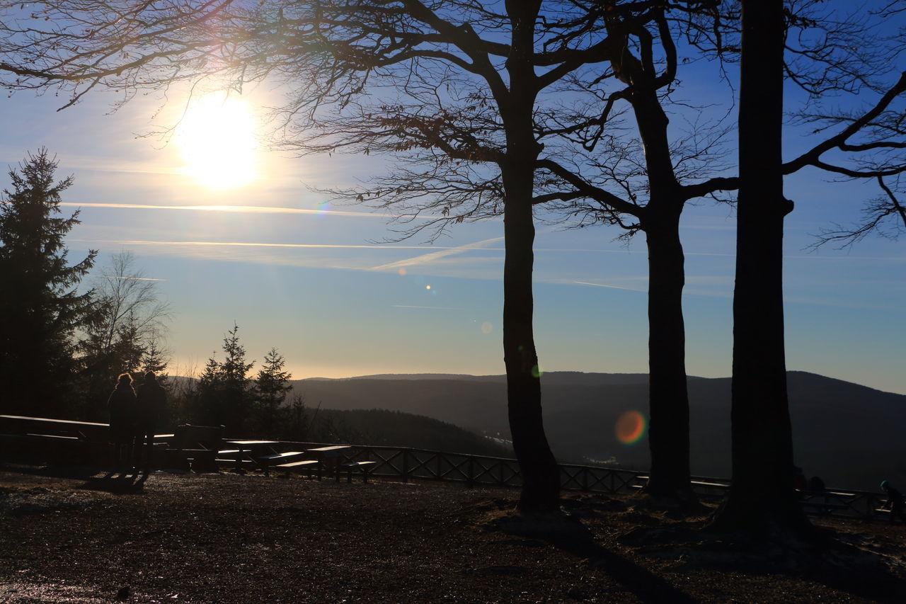 Dendrodrilio Aussicht Back Light Beauty In Nature Bäume Gegenlicht Herbst Himmel Landscape Landschaft Lens Reflection Sky Sun Sunlight Sunset Trees