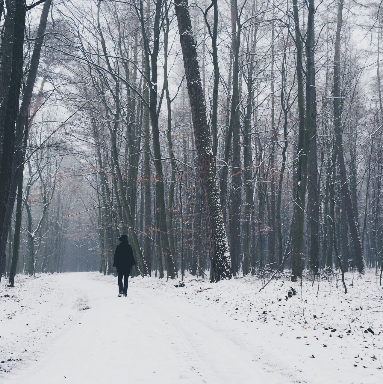 Person Walking On Snow Covered Field Against Sky