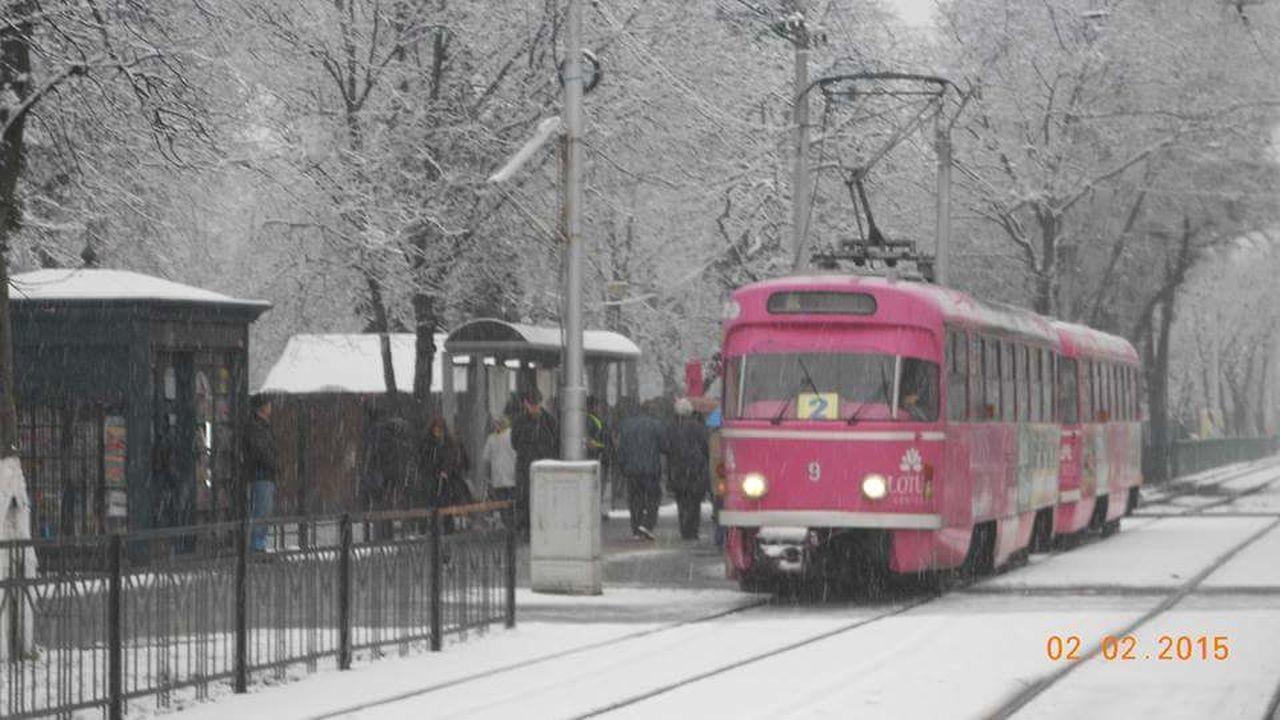 Winter Snow Cold Temperature Public Transportation Snowing Outdoors Day Nature Urban City Romania Bihor Nagyvárad Oradea,România City Life Tram Street Tree Tramway Tatra Villamos Pink Utca Tramvai OTL