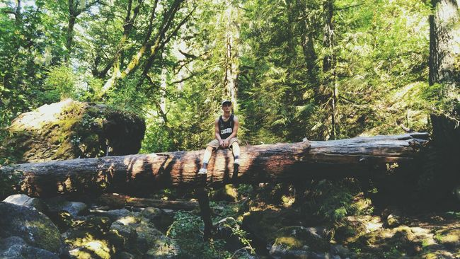 Gnarly man. Enjoying The Sun On A Hike Trees Forrest Photography Forest Chilling Just Chillin' Hikes PNW EyeEm Nature Lover