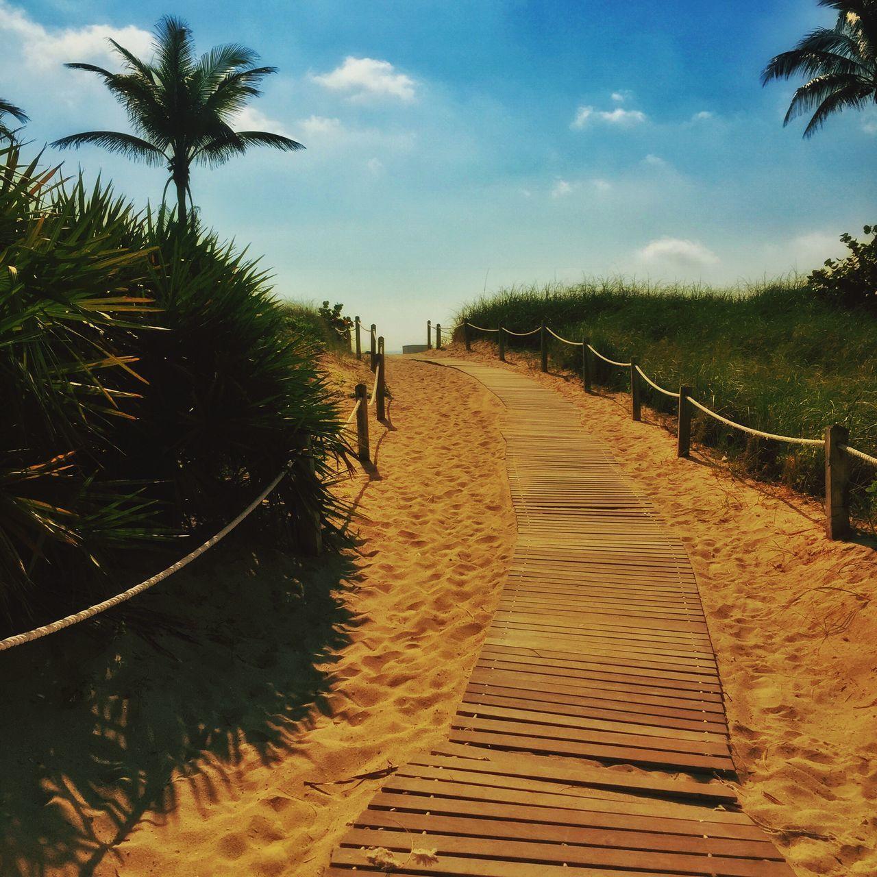 I'm back Miami. ❤️ Miami Miamibeach Miami Beach Beach Photography Beach Sand Sand Walk Beachtime Palms Nature Relaxing