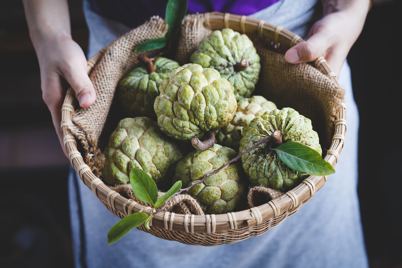 Custard apples in the basket bamboo ASIA Bamboo Basket Burlap Custard Apple Dark Food Food And Drink Fresh Fruit Green Heathy Food Leaf Mãng Cầu Nature Old Wood Plant Raw Sweet Tasty Vietnam Vietnamese Fruit