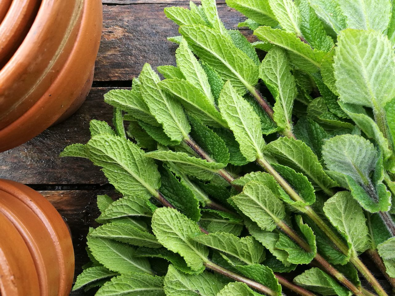 Mint Leaf - Culinary Mint Mint Leaves Mint Green Mints Leaf Green Color Plant Growth Close-up Freshness Nature Wallpaper Full Frame Fullframe Moroccan Mint Spices Spices Food Spices Collection EyeEmNewHere