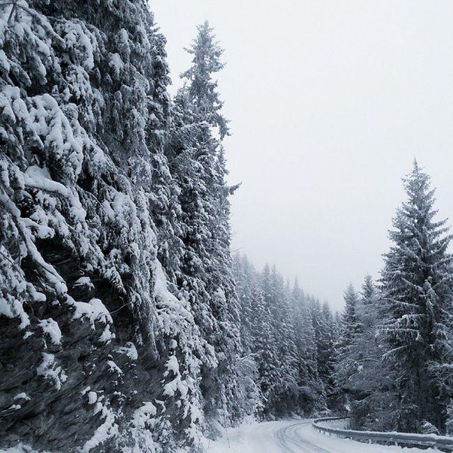 Utno Turistforeningen Dnt Norgeibilder Ilovenorway Idyll Frostopia Yrbilder Frost Take Fog Dis Rendalen 24svipptursekker Ulvangkonkurranse Magisk Utpåtur Utinaturen