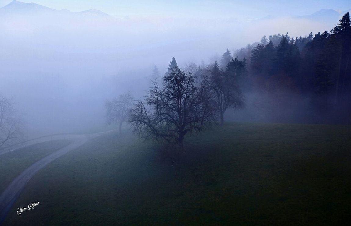 Mt.pilatus Lucerne Switzerland Street Photography Traveling Nature Landscape_photography