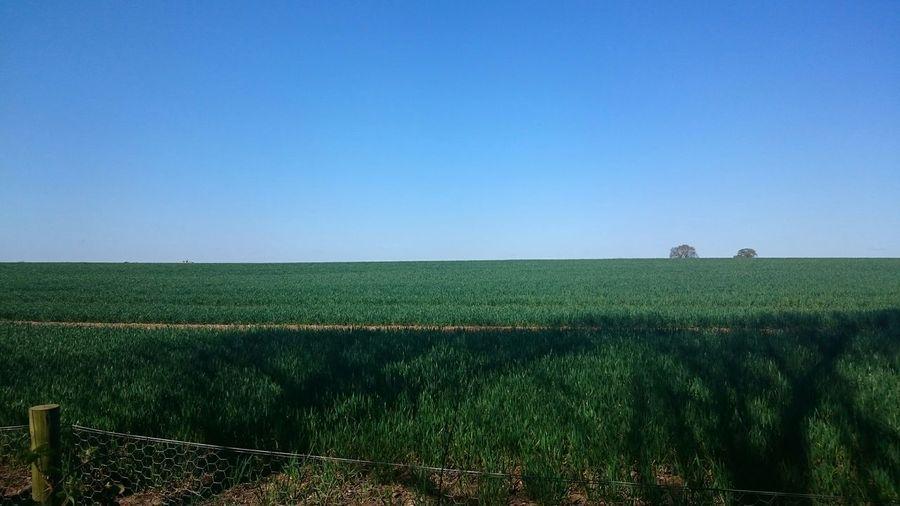 farm beside coombe First Eyeem Photo Farmland Landscape Sky Horizon