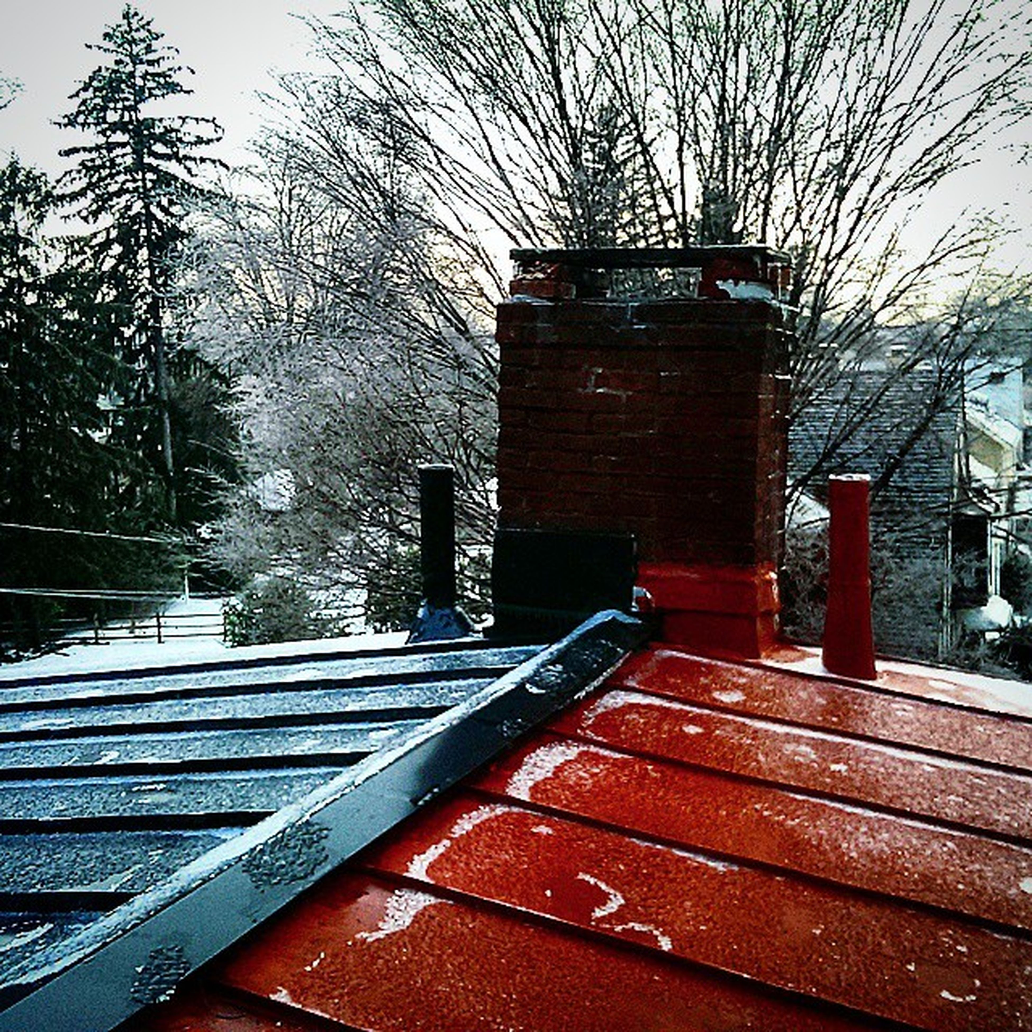 season, cold temperature, tree, winter, weather, snow, bare tree, built structure, building exterior, architecture, water, frozen, focus on foreground, wood - material, railing, rain, day, house, wet, no people