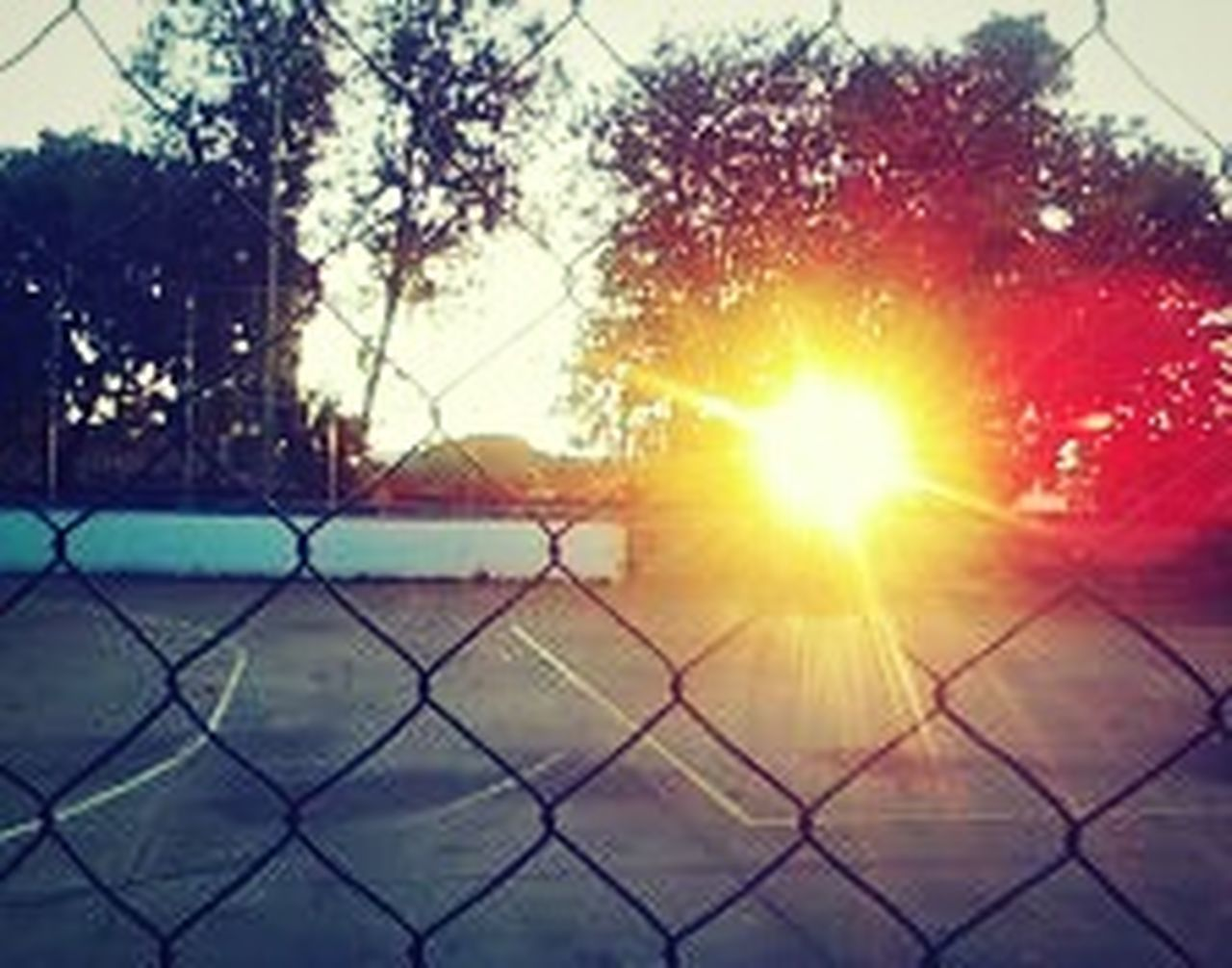 chainlink fence, sunset, sun, sunlight, sunbeam, no people, sky, outdoors, day, nature, tree, city, close-up