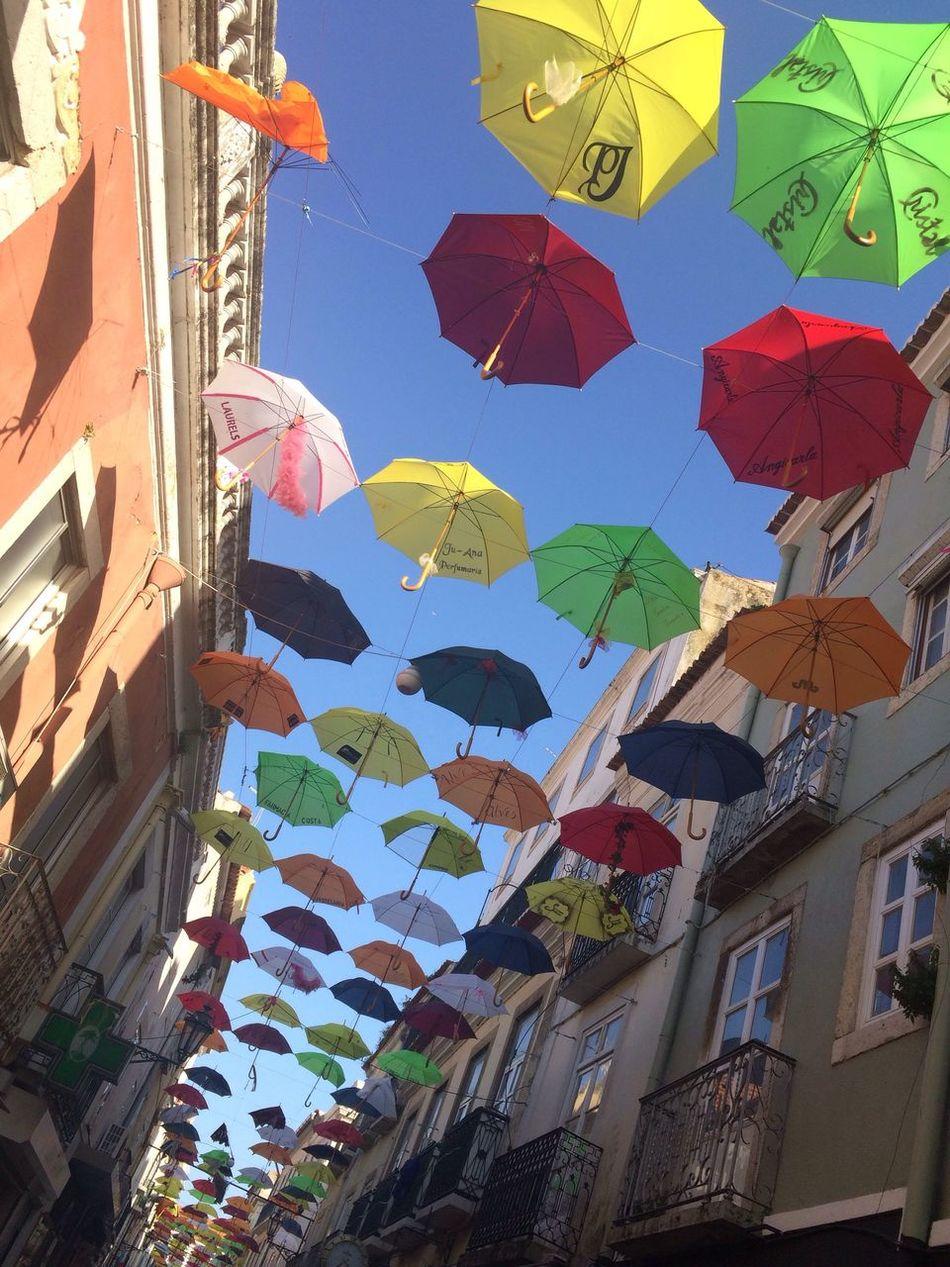 Umbrella Streetphotography Stree Art Color Colorful CF Setubal Setúbal Portugal