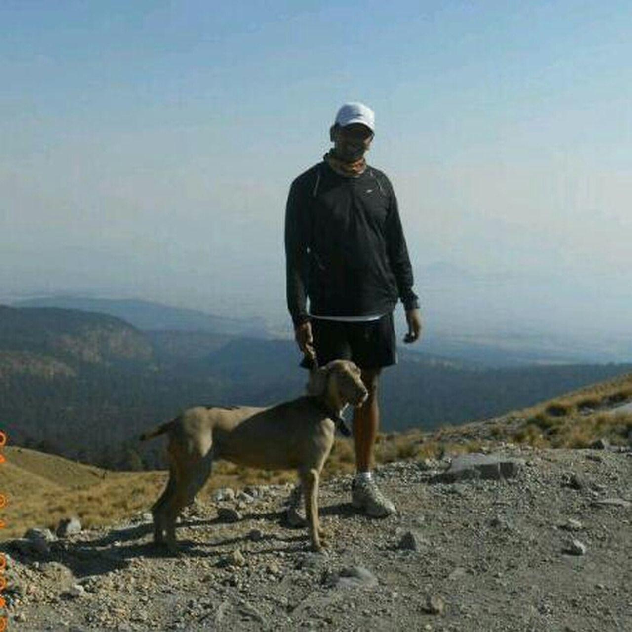 My Dog Loverichardperry