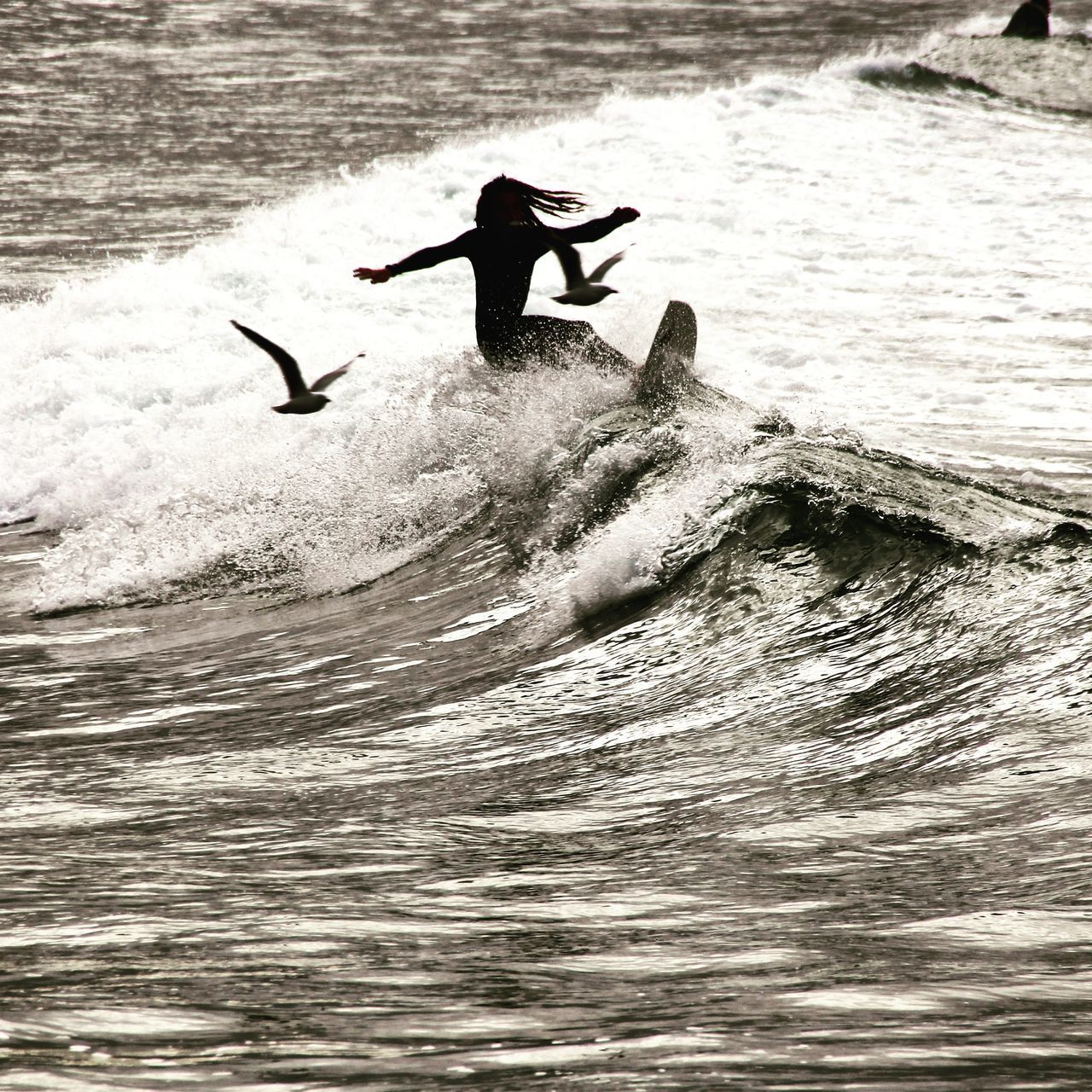 Lets fly Waves, Ocean, Nature Check This Out Beauty In Nature PeopleOfTheOceans Surfing Beach Photography Wave Seagulls And Sea Fine Art Photography