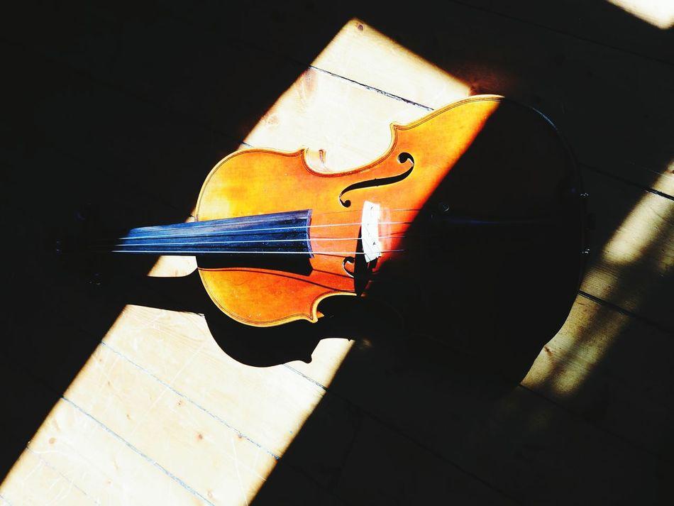 My violin Music Details Of My Life Violon Ombres Et Lumières Light Window Violinist Violin Musique Lumière Besteyemphotos Showcase May