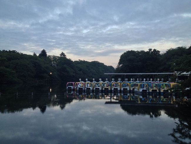 Inokashira Park. The Moment - 2014 EyeEm Awards Clouds And Sky EyeEm Nature Lover Water Reflections