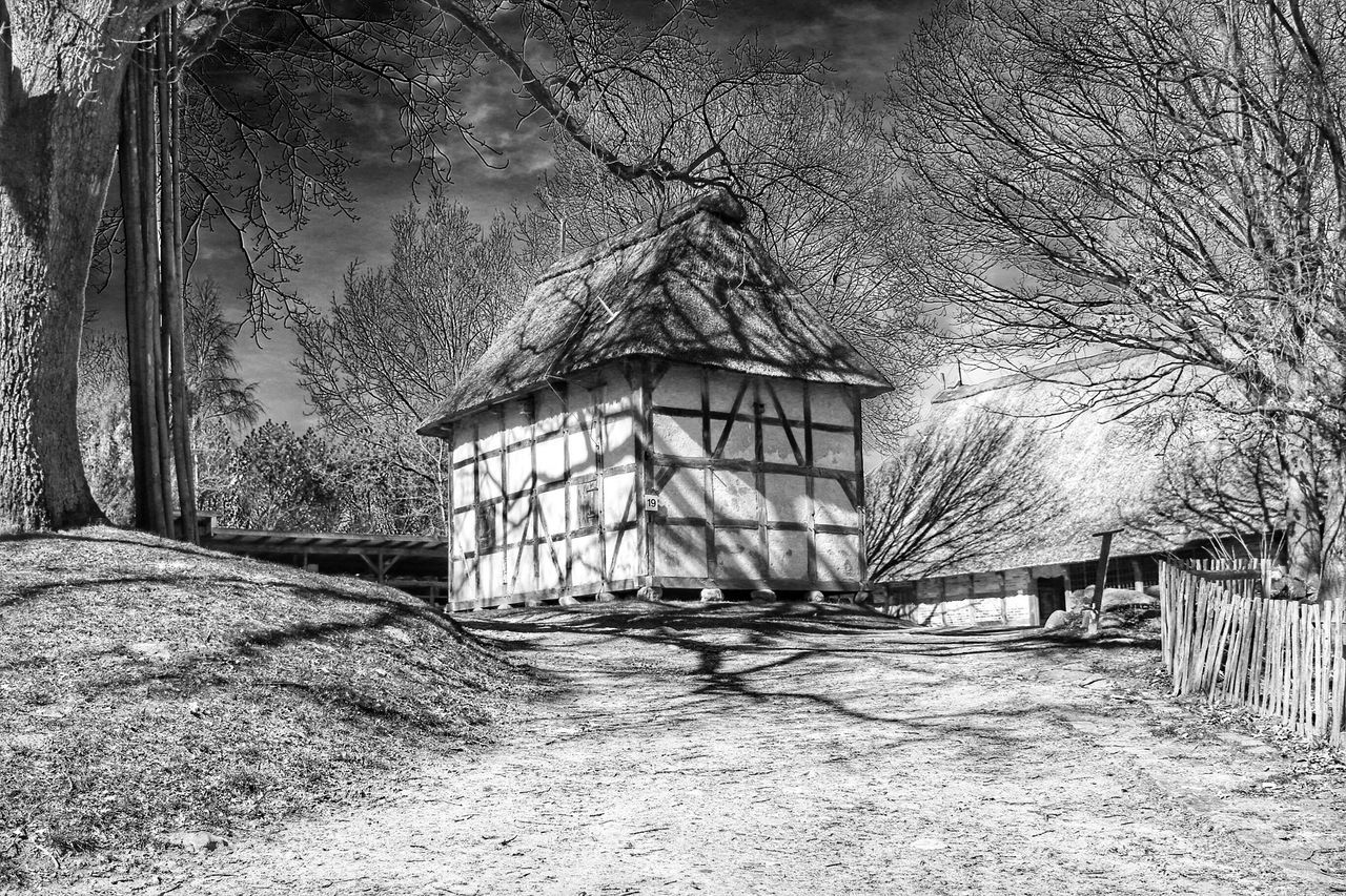 Tree Built Structure No People Architecture Building Exterior Outdoors Day Nature Shadow Blackandwhite Historical Building Village Abstract