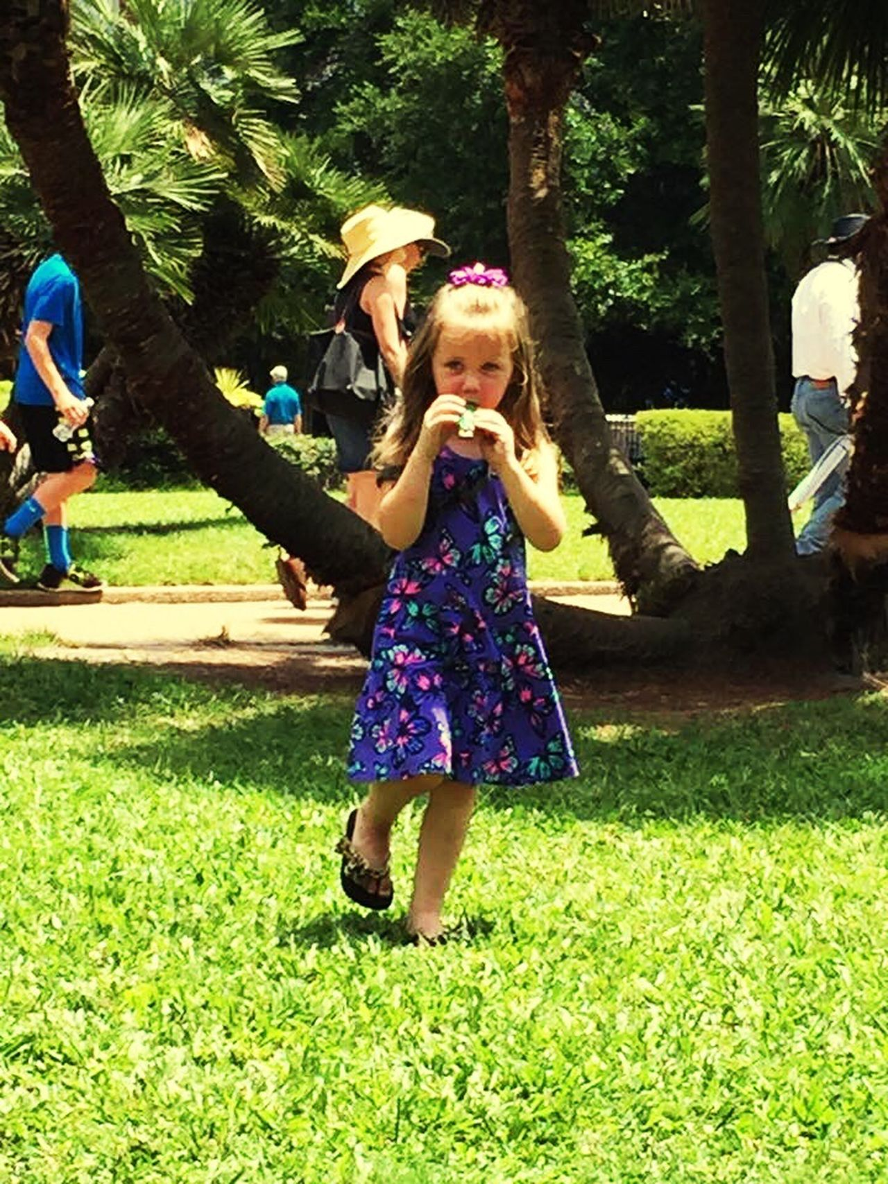 Music in the square Grass Childhood Innocence Child Sunlight Happiness Outdoors People Tree Jackson Square