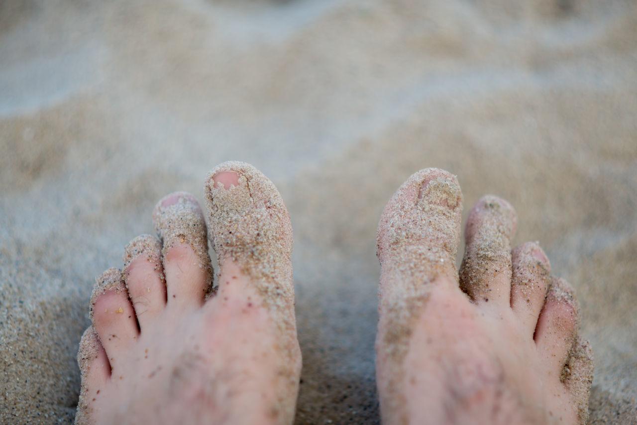 Beautiful stock photos of ukraine,  Beach,  Beige,  Close-Up,  Day