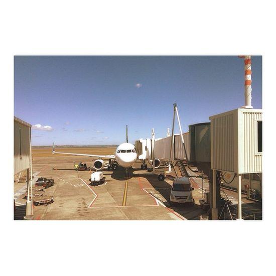 Goodbye Auckland n' Hello Wellington  👋👋 Airnewzealand Aucklandairport Domestic Airplane Sunny Lovetheweather  Summer