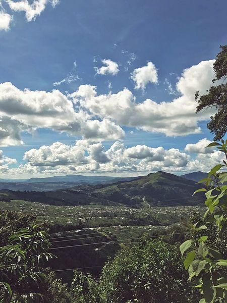 Nature Tree Day Outdoors Landscape Cloud - Sky Mountain Beauty In Nature Freshness No People Guatemala Xela Quetzaltenango Perfect Weather