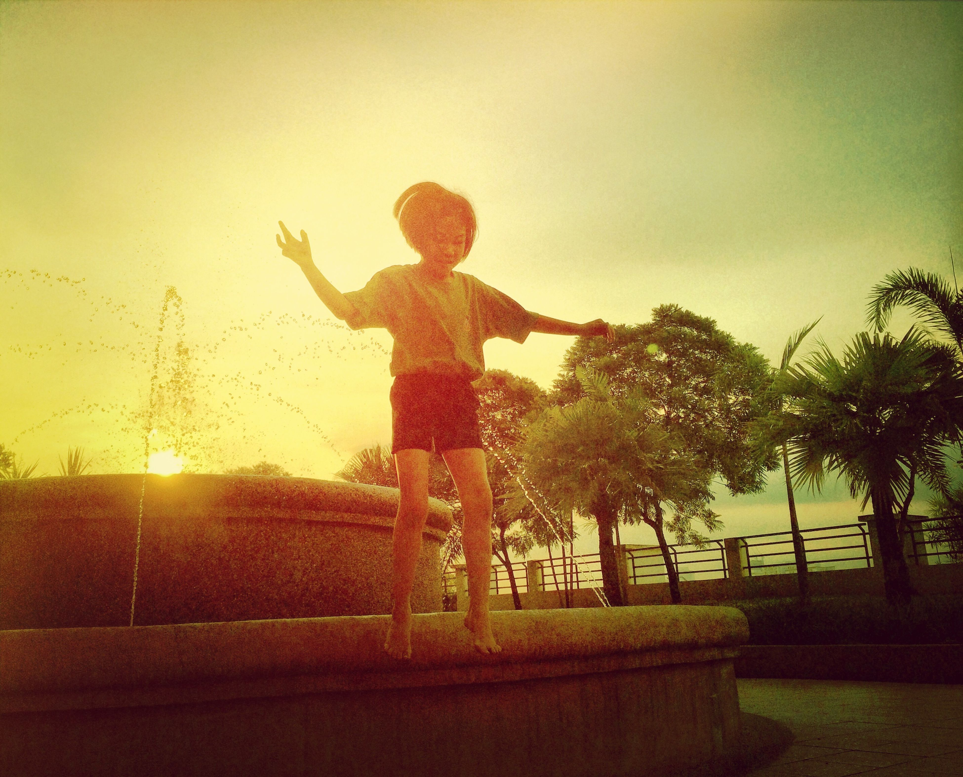 tree, sky, full length, leisure activity, lifestyles, childhood, sunset, silhouette, arms raised, mid-air, park - man made space, human representation, standing, playing, outdoors, jumping, sunlight, arms outstretched