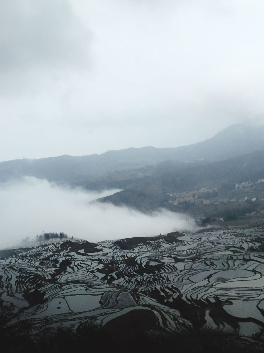 Terraced Rice Fields Terrace Gardening Terrace Farming Fog