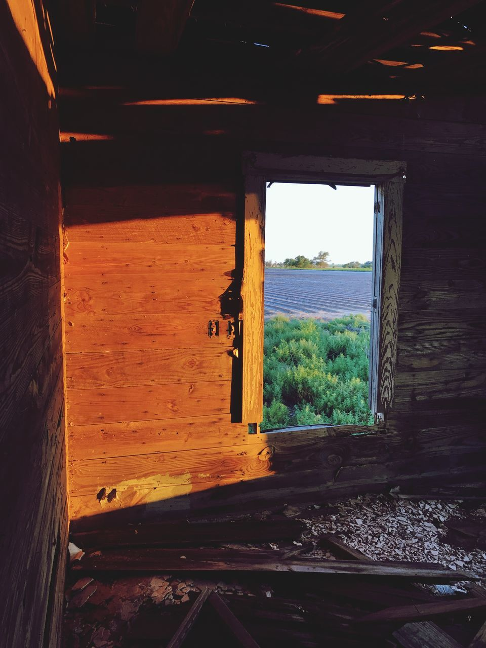 window, indoors, architecture, built structure, day, no people, nature